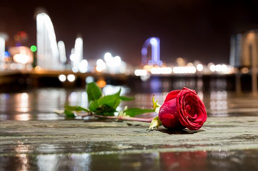 flower-2508954__340[1]