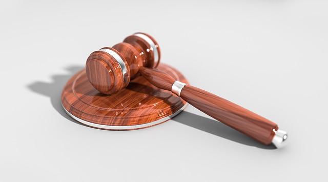 עורך דין מבקר המדינה – מה זה אומר?