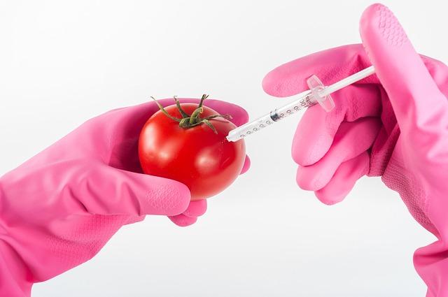 בדיקות בטיחות מזון