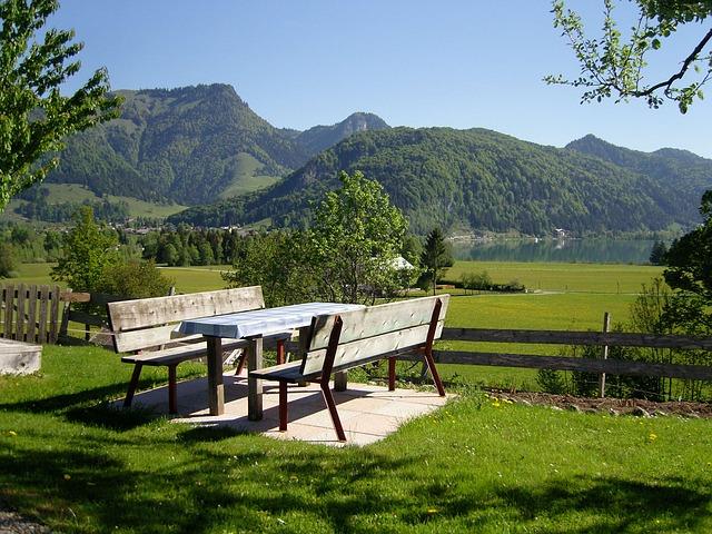 איך בוחרים דשא סינתטי לבית?