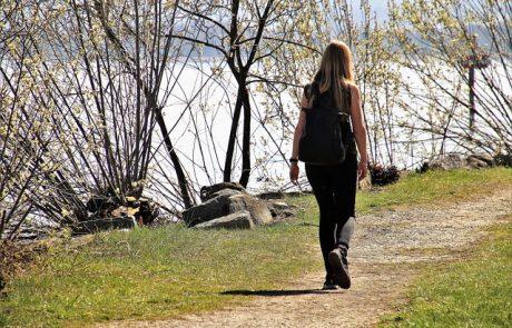 המלצות על מסלולי טיול חווייתיים לבתי ספר